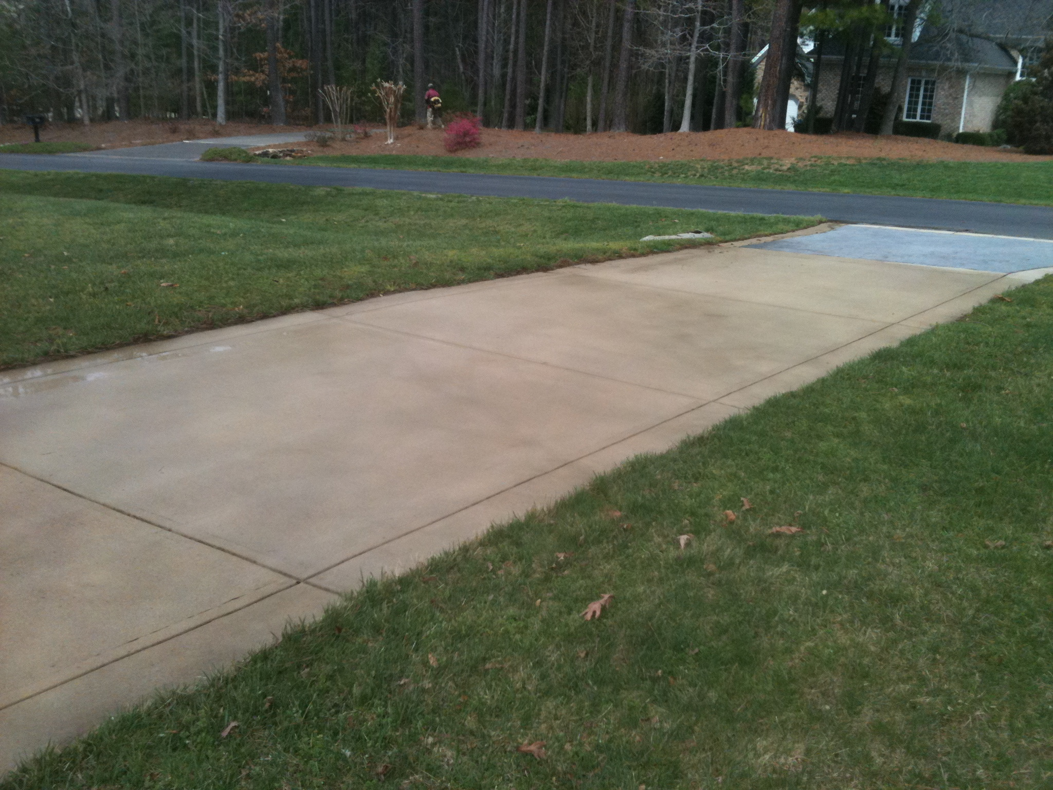 Driveway After Roof Refresh