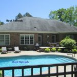 Roof Stain-Roof Mold Raleigh NC