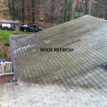 Roof stains before raleigh cary wake forest nc
