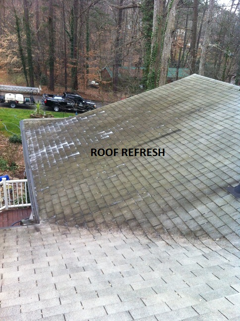 Some Really Bad Roof Stains in Cary, NC