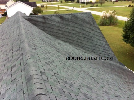 Recent Roof Cleaning Projects in Raleigh, NC
