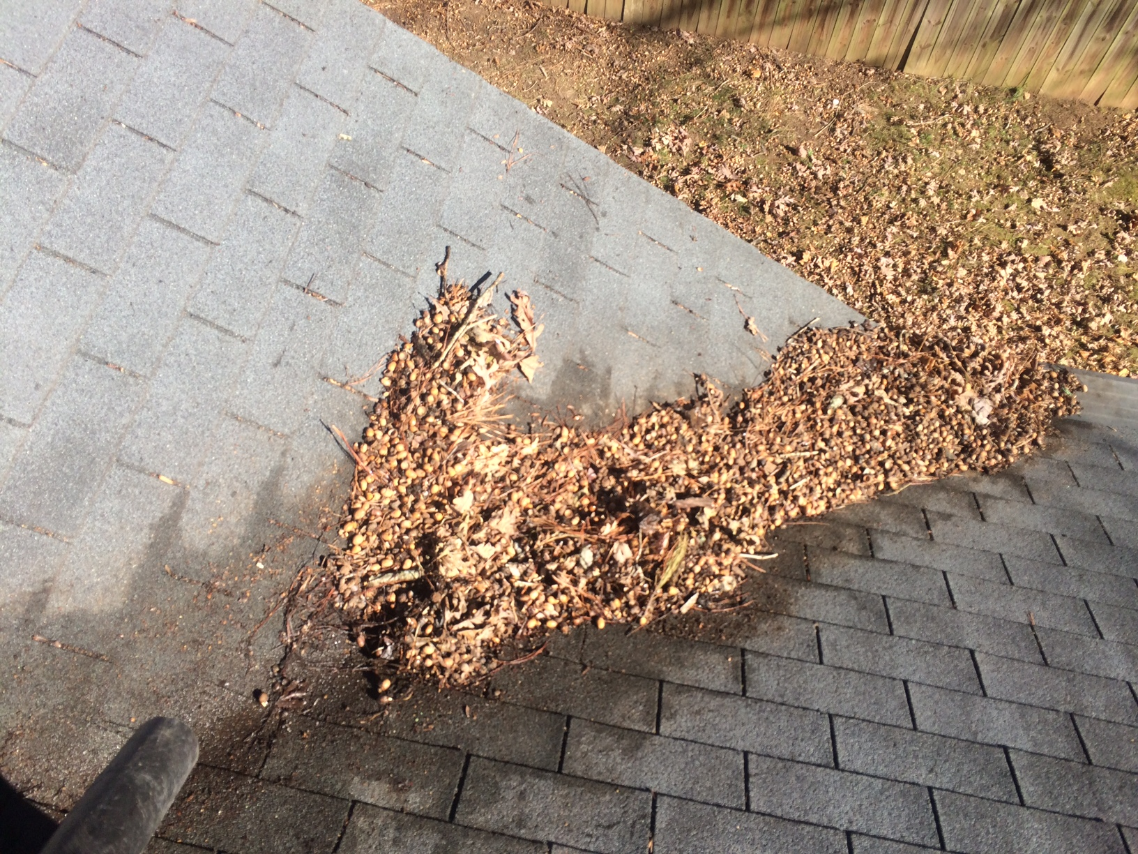 Roof Debris Don T Ignore It Roof Refresh